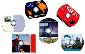 CD-ROM Business Cards