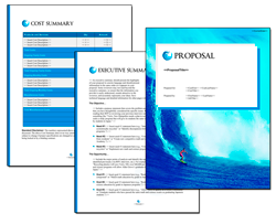 Business Proposal Software and Templates Aqua #8