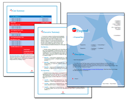 Business Proposal Software and Templates Flag #5